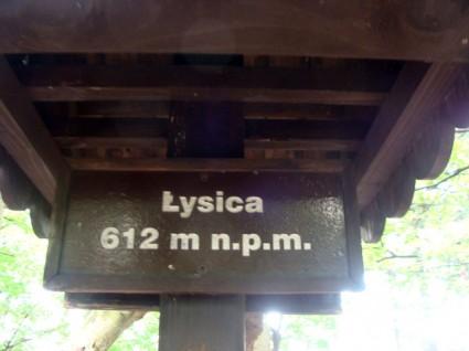 lysica