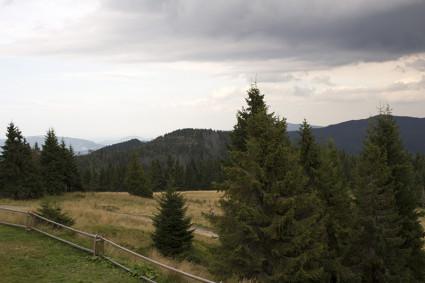 Zejście z Turbacza