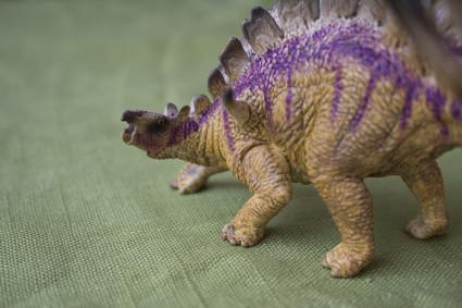 kentrosaurus9