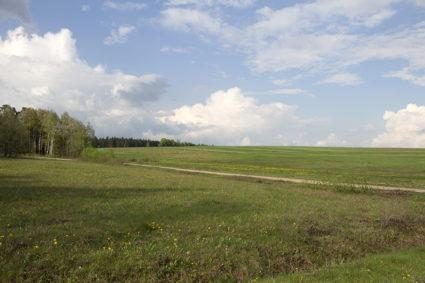 Dobrzeszowskie pola