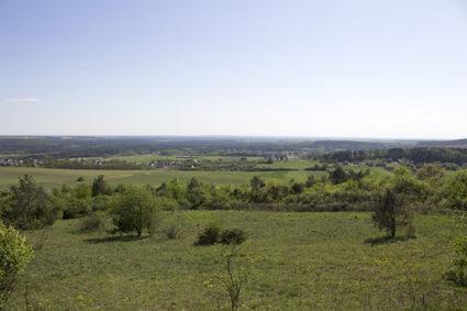 Grząby Bolmińskie - widoki ze szczytu