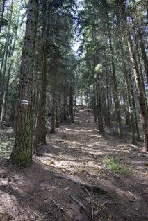 Największa stromizna w drodze na szczyt