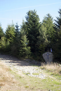 Charakterystyczny kamień z krzyżem przy wejściu na Radziejową