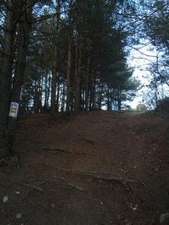 Kobyla Góra - 284 m n.p.m. - KP 13